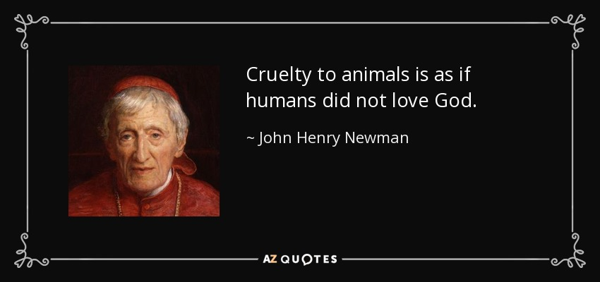 Cruelty to animals is as if humans did not love God. - John Henry Newman
