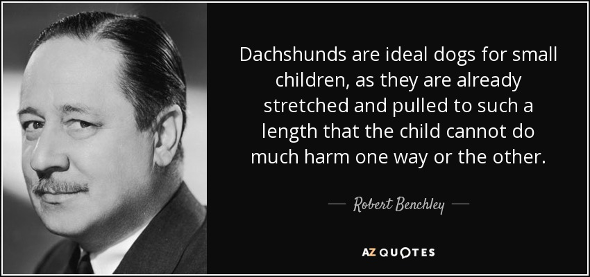 Dachshunds are ideal dogs for small children, as they are already stretched and pulled to such a length that the child cannot do much harm one way or the other. - Robert Benchley