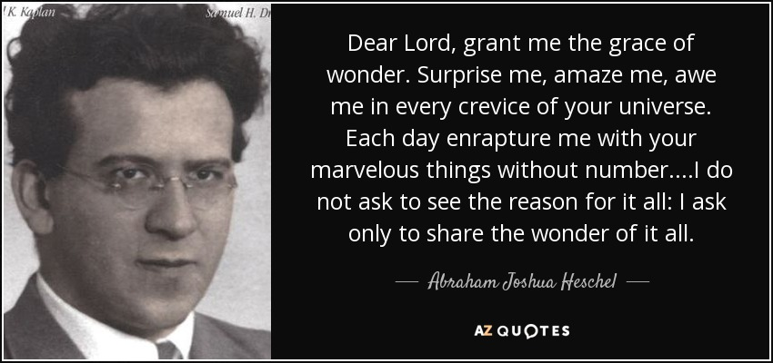 Dear Lord, grant me the grace of wonder. Surprise me, amaze me, awe me in every crevice of your universe. Each day enrapture me with your marvelous things without number. ...I do not ask to see the reason for it all: I ask only to share the wonder of it all. - Abraham Joshua Heschel