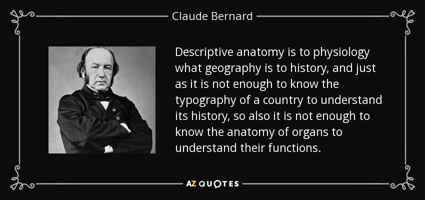 Descriptive anatomy is to physiology what geography is to history, and just as it is not enough to know the typography of a country to understand its history, so also it is not enough to know the anatomy of organs to understand their functions. - Claude Bernard