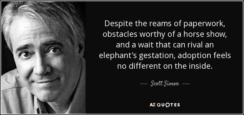 Despite the reams of paperwork, obstacles worthy of a horse show, and a wait that can rival an elephant's gestation, adoption feels no different on the inside. - Scott Simon