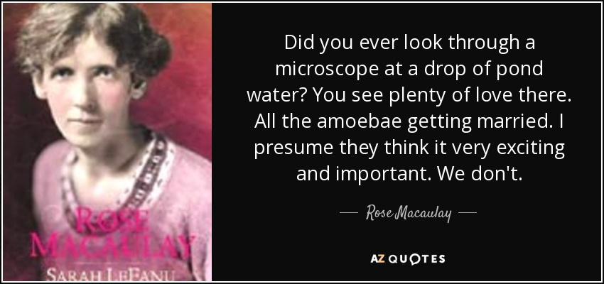 Did you ever look through a microscope at a drop of pond water? You see plenty of love there. All the amoebae getting married. I presume they think it very exciting and important. We don't. - Rose Macaulay