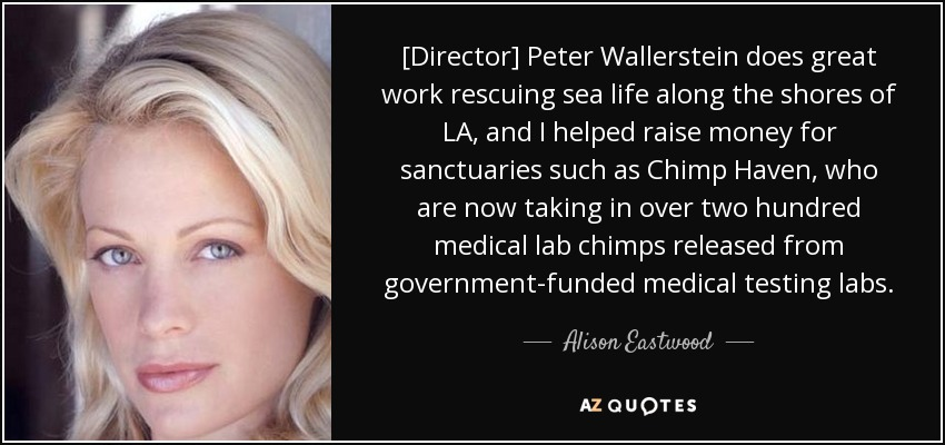 [Director] Peter Wallerstein does great work rescuing sea life along the shores of LA, and I helped raise money for sanctuaries such as Chimp Haven, who are now taking in over two hundred medical lab chimps released from government-funded medical testing labs. - Alison Eastwood