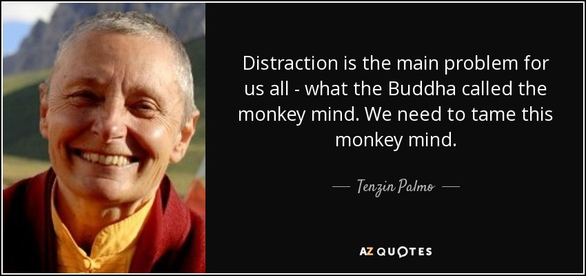 Distraction is the main problem for us all - what the Buddha called the monkey mind. We need to tame this monkey mind. - Tenzin Palmo