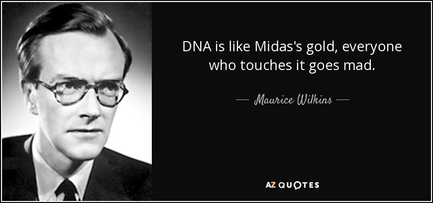 DNA is like Midas's gold, everyone who touches it goes mad. - Maurice Wilkins