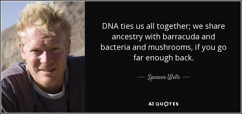 DNA ties us all together; we share ancestry with barracuda and bacteria and mushrooms, if you go far enough back. - Spencer Wells