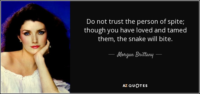 Do not trust the person of spite; though you have loved and tamed them, the snake will bite. - Morgan Brittany