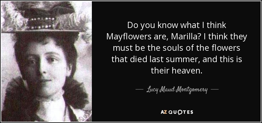 Do you know what I think Mayflowers are, Marilla? I think they must be the souls of the flowers that died last summer, and this is their heaven. - Lucy Maud Montgomery