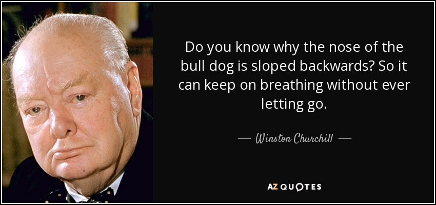 Do you know why the nose of the bull dog is sloped backwards? So it can keep on breathing without ever letting go. - Winston Churchill