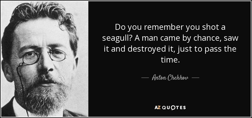 Do you remember you shot a seagull? A man came by chance, saw it and destroyed it, just to pass the time. - Anton Chekhov