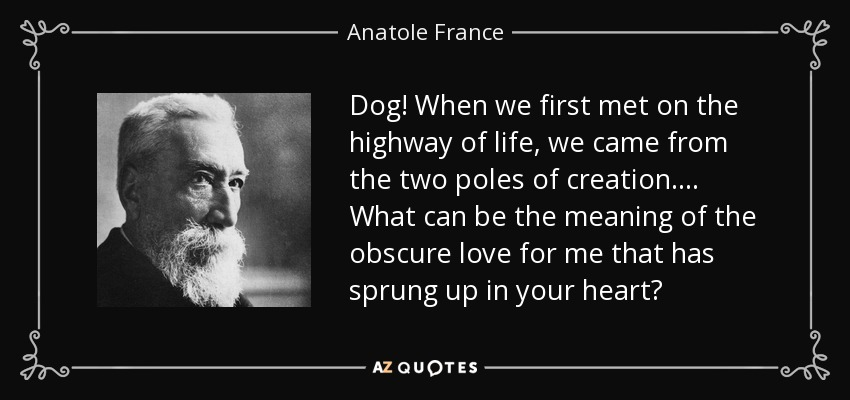 Anatole France Quote Dog When We First Met On The Highway Of Life