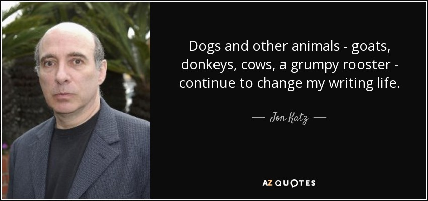 Dogs and other animals - goats, donkeys, cows, a grumpy rooster - continue to change my writing life. - Jon Katz