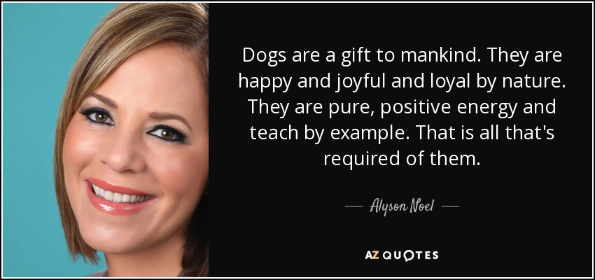 Dogs are a gift to mankind. They are happy and joyful and loyal by nature. They are pure, positive energy and teach by example. That is all that's required of them. - Alyson Noel