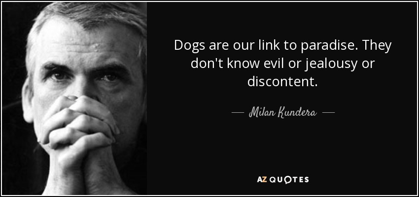 Dogs are our link to paradise. They don't know evil or jealousy or discontent. - Milan Kundera