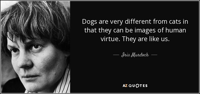 Dogs are very different from cats in that they can be images of human virtue. They are like us. - Iris Murdoch