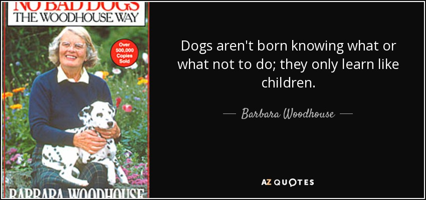 Dogs aren't born knowing what or what not to do; they only learn like children. - Barbara Woodhouse