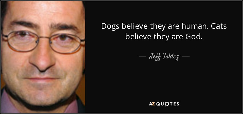 Dogs believe they are human. Cats believe they are God. - Jeff Valdez