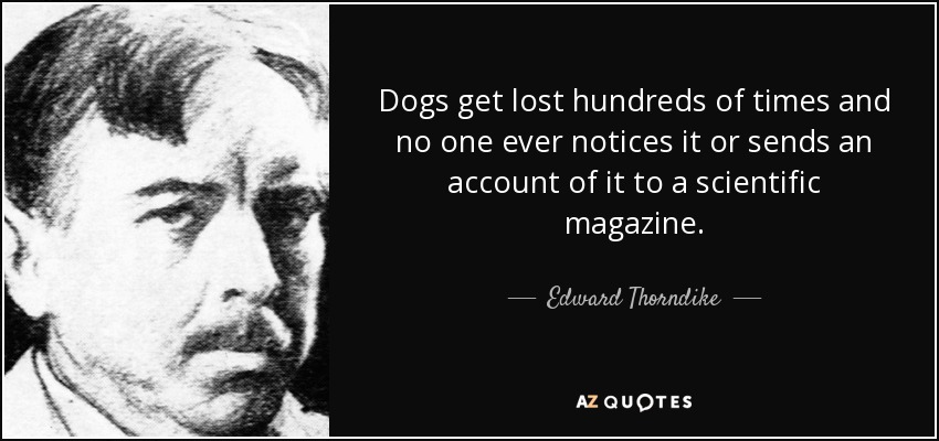 Dogs get lost hundreds of times and no one ever notices it or sends an account of it to a scientific magazine. - Edward Thorndike