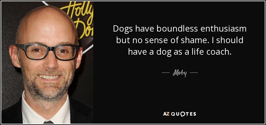 Dogs have boundless enthusiasm but no sense of shame. I should have a dog as a life coach. - Moby