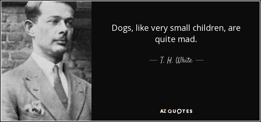 Dogs, like very small children, are quite mad. - T. H. White