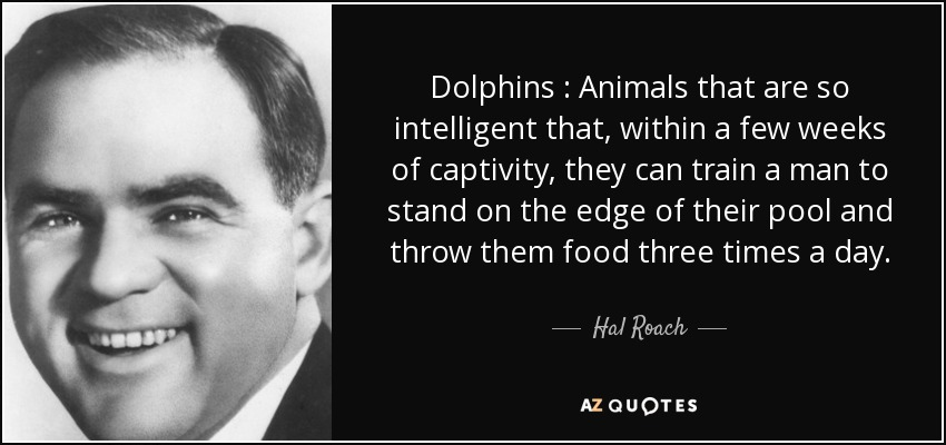 Dolphins : Animals that are so intelligent that, within a few weeks of captivity, they can train a man to stand on the edge of their pool and throw them food three times a day. - Hal Roach