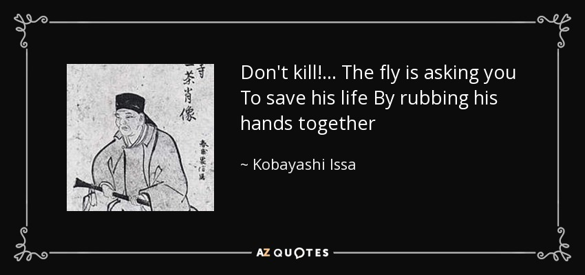 Don't kill!... The fly is asking you To save his life By rubbing his hands together - Kobayashi Issa