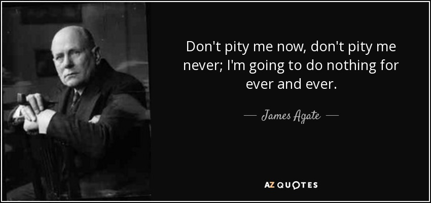Don't pity me now, don't pity me never; I'm going to do nothing for ever and ever. - James Agate