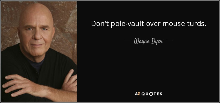 Don't pole-vault over mouse turds. - Wayne Dyer