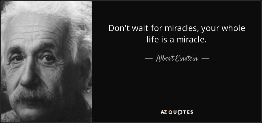 Don't wait for miracles, your whole life is a miracle. - Albert Einstein