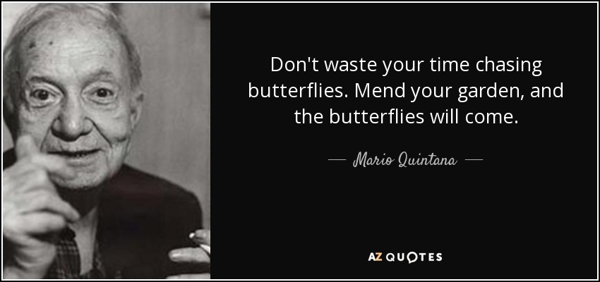 Don't waste your time chasing butterflies. Mend your garden, and the butterflies will come. - Mario Quintana