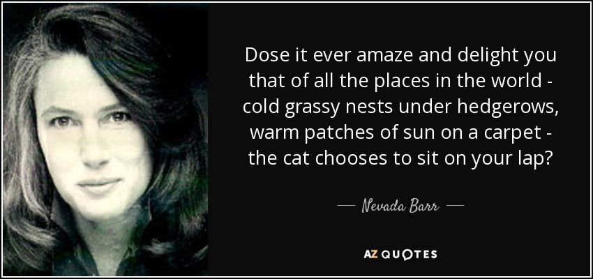Dose it ever amaze and delight you that of all the places in the world - cold grassy nests under hedgerows, warm patches of sun on a carpet - the cat chooses to sit on your lap? - Nevada Barr