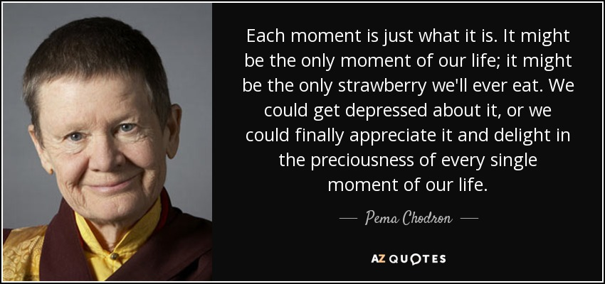Each moment is just what it is. It might be the only moment of our life; it might be the only strawberry we'll ever eat. We could get depressed about it, or we could finally appreciate it and delight in the preciousness of every single moment of our life. - Pema Chodron