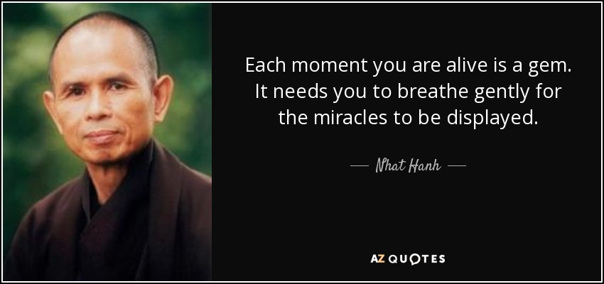 Each moment you are alive is a gem. It needs you to breathe gently for the miracles to be displayed. - Nhat Hanh