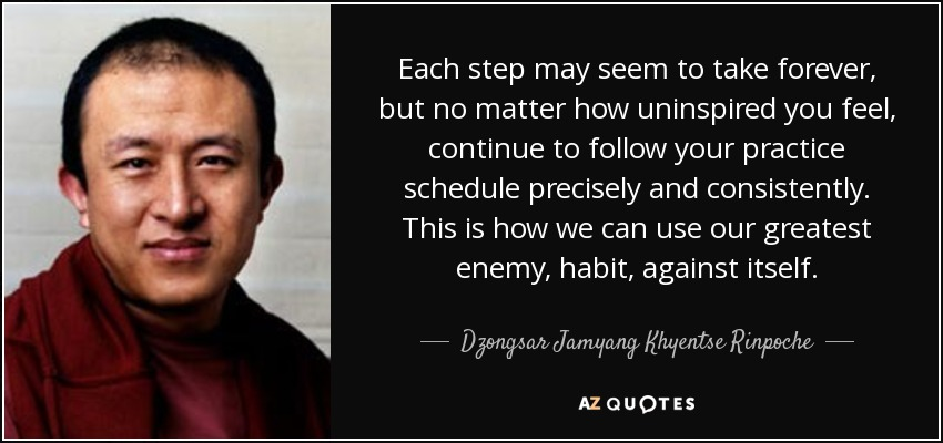 Each step may seem to take forever, but no matter how uninspired you feel, continue to follow your practice schedule precisely and consistently. This is how we can use our greatest enemy, habit, against itself. - Dzongsar Jamyang Khyentse Rinpoche
