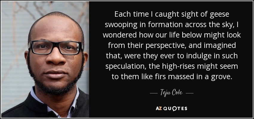 Each time I caught sight of geese swooping in formation across the sky, I wondered how our life below might look from their perspective, and imagined that, were they ever to indulge in such speculation, the high-rises might seem to them like firs massed in a grove. - Teju Cole