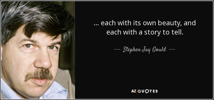 ... each with its own beauty, and each with a story to tell. - Stephen Jay Gould