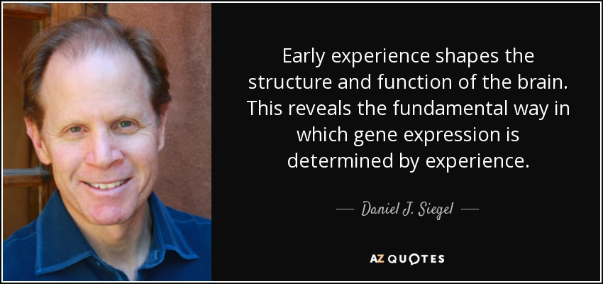 Early experience shapes the structure and function of the brain. This reveals the fundamental way in which gene expression is determined by experience. - Daniel J. Siegel