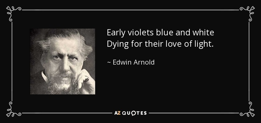 Early violets blue and white Dying for their love of light. - Edwin Arnold