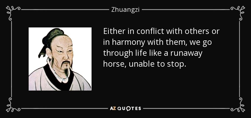 Either in conflict with others or in harmony with them, we go through life like a runaway horse, unable to stop. - Zhuangzi