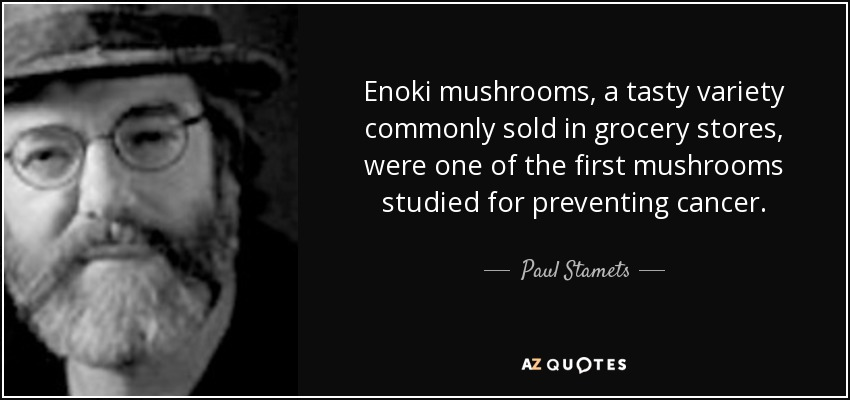 Enoki mushrooms, a tasty variety commonly sold in grocery stores, were one of the first mushrooms studied for preventing cancer. - Paul Stamets