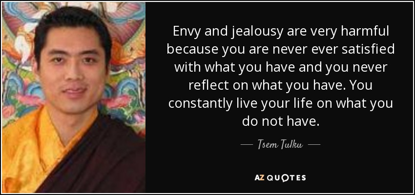 Envy and jealousy are very harmful because you are never ever satisfied with what you have and you never reflect on what you have. You constantly live your life on what you do not have. - Tsem Tulku