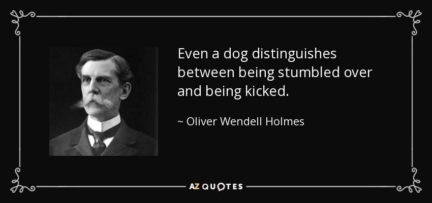 Even a dog distinguishes between being stumbled over and being kicked. - Oliver Wendell Holmes, Jr.