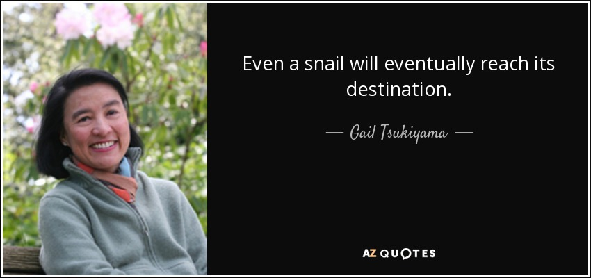 Even a snail will eventually reach its destination. - Gail Tsukiyama