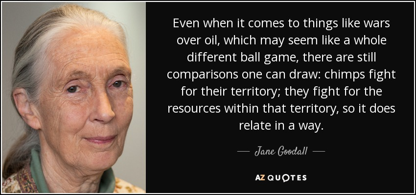 Even when it comes to things like wars over oil, which may seem like a whole different ball game, there are still comparisons one can draw: chimps fight for their territory; they fight for the resources within that territory, so it does relate in a way. - Jane Goodall