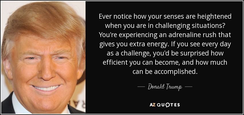 Ever notice how your senses are heightened when you are in challenging situations? You're experiencing an adrenaline rush that gives you extra energy. If you see every day as a challenge, you'd be surprised how efficient you can become, and how much can be accomplished. - Donald Trump