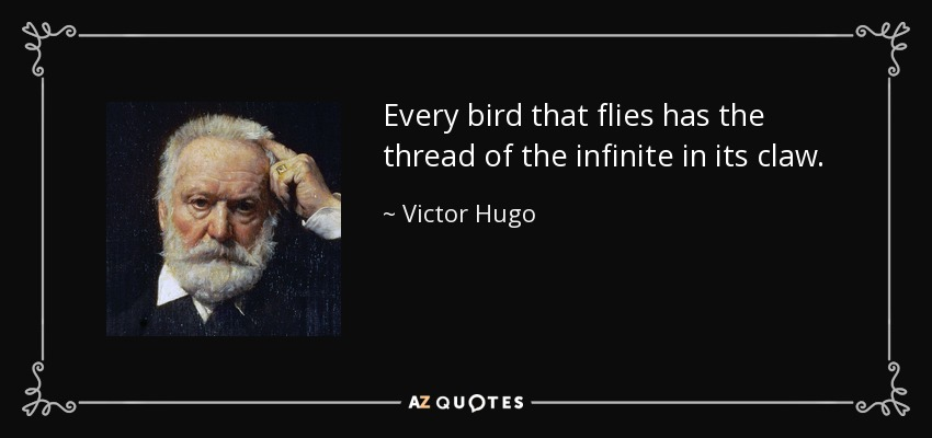 Every bird that flies has the thread of the infinite in its claw. - Victor Hugo