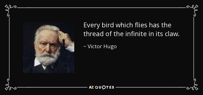 Every bird which flies has the thread of the infinite in its claw. - Victor Hugo