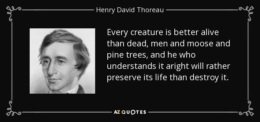 Every creature is better alive than dead, men and moose and pine trees, and he who understands it aright will rather preserve its life than destroy it. - Henry David Thoreau