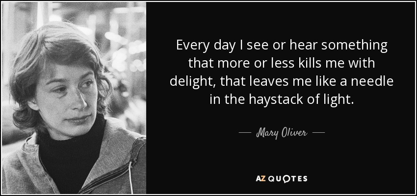Every day I see or hear something that more or less kills me with delight, that leaves me like a needle in the haystack of light. - Mary Oliver