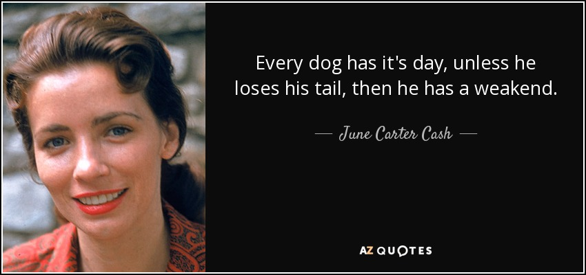 Every dog has it's day, unless he loses his tail, then he has a weakend. - June Carter Cash
